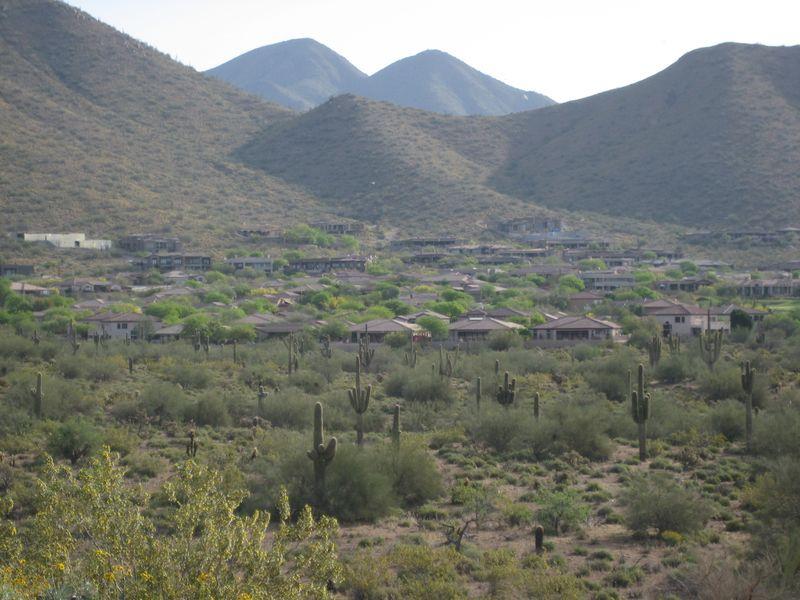 Suburban Phoenix