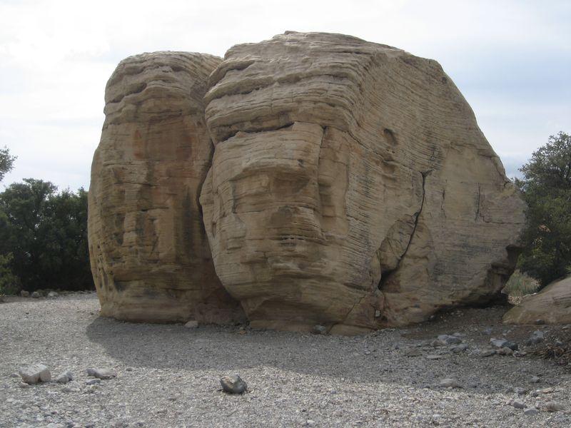 donal trump shynx red rock canyon nv