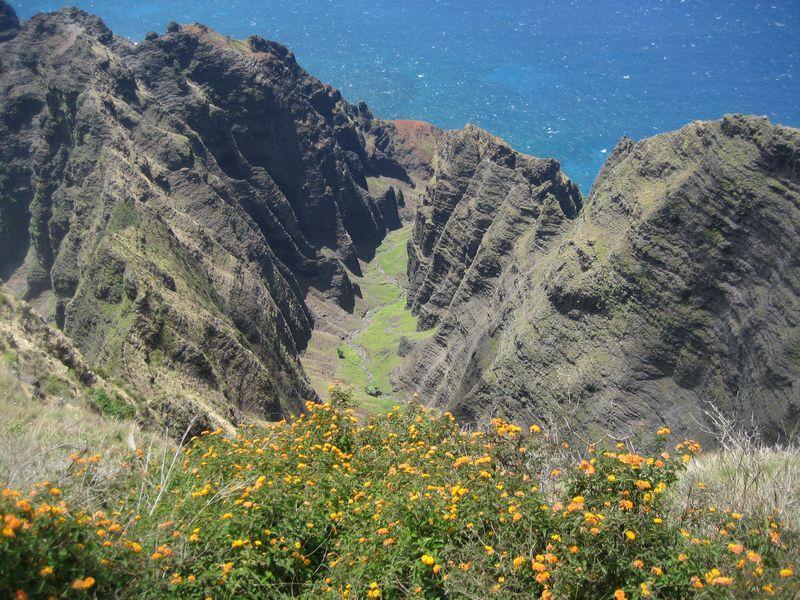View from Awa'awapuhi Trail Kauai
